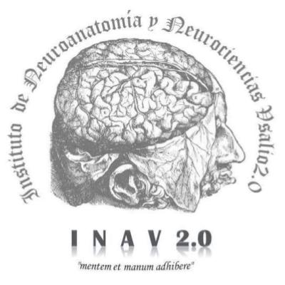 Instituto de Neuroanatomía y Neurociencias Vesali0 2.0